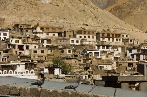 Rustic Leh Town
